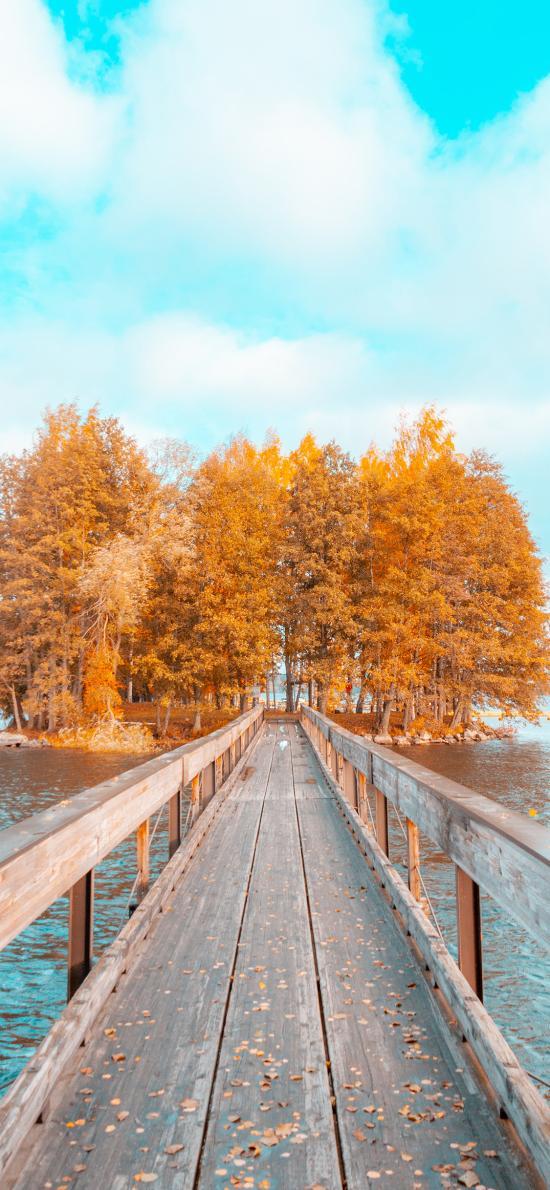 栈道 水面 小岛 树林