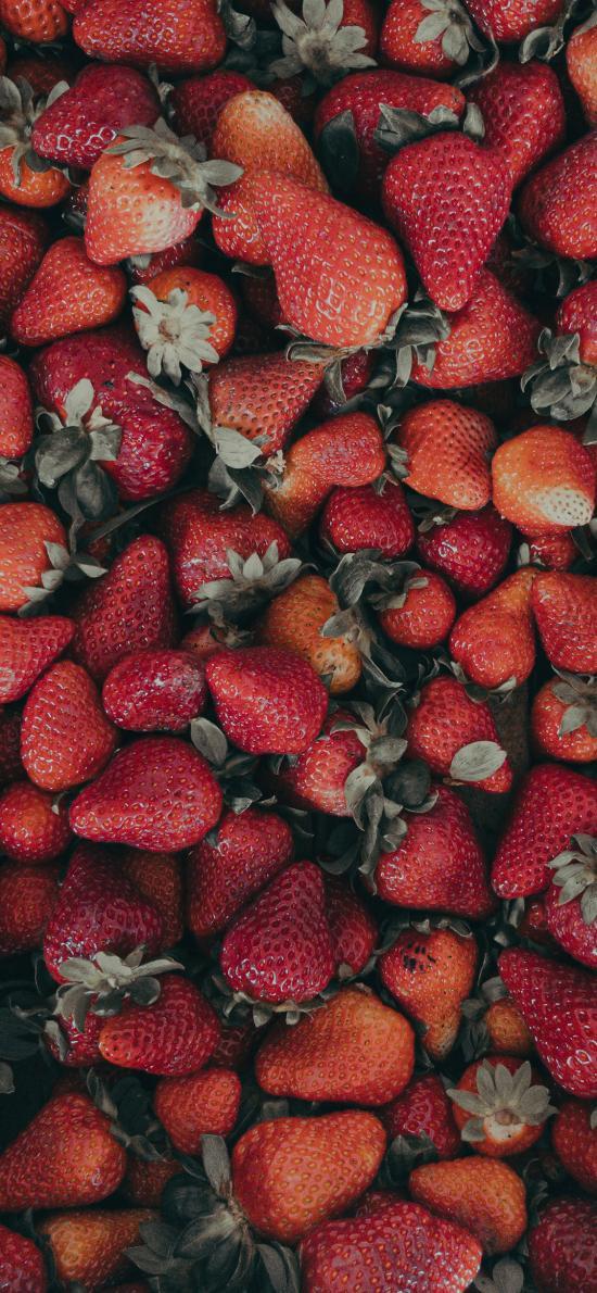 草莓 水果 新鲜 颗粒