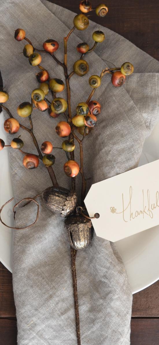 盘子 餐布 树枝 果实 装饰