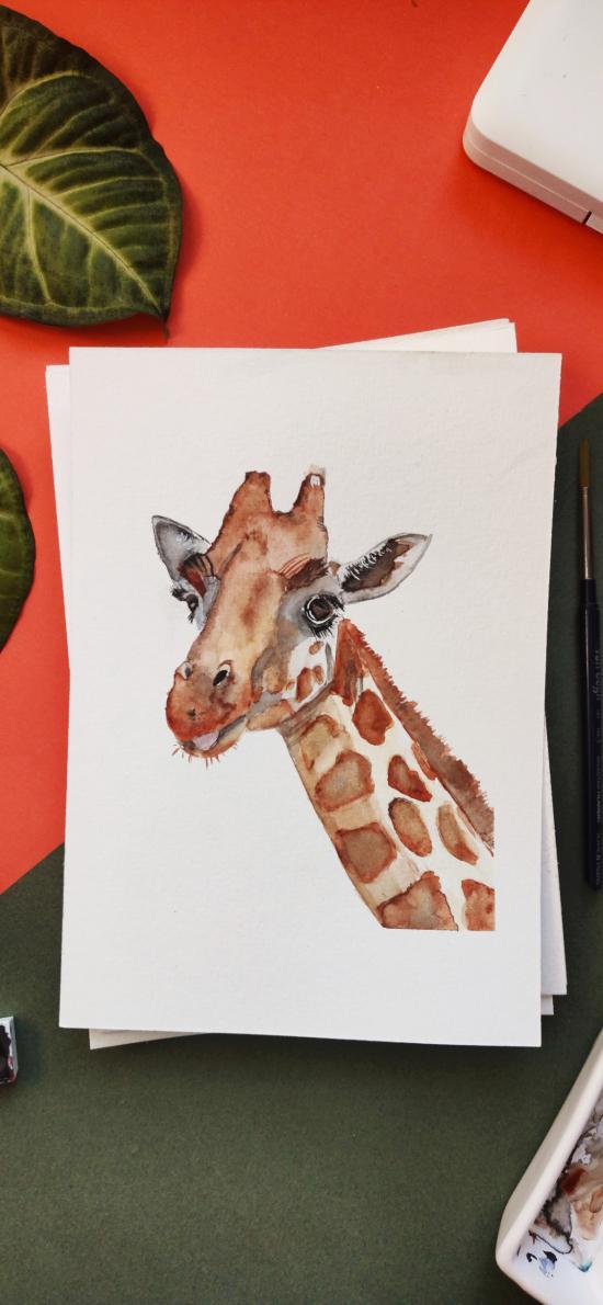 插画 长颈鹿 绿植 绘画