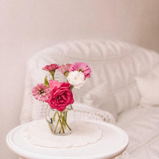 家居 鲜花 花瓶 非洲菊 沙发