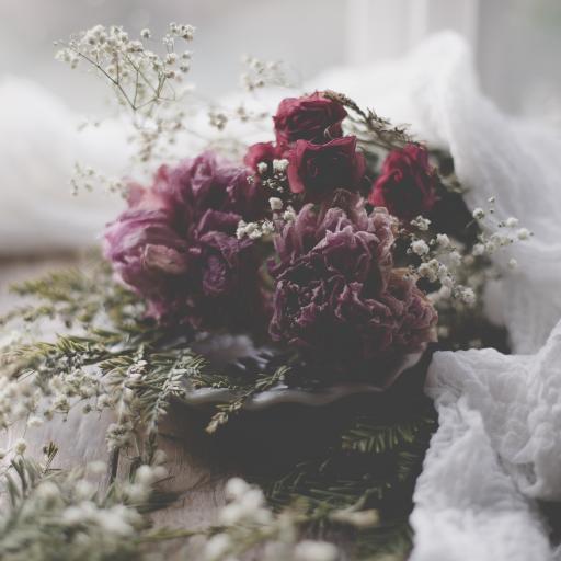 花束 花草 满天星 鲜花