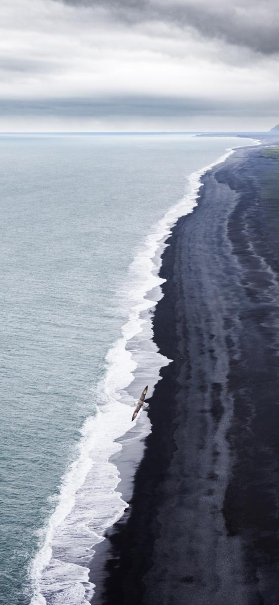 大海 海水 海浪 飞鸟