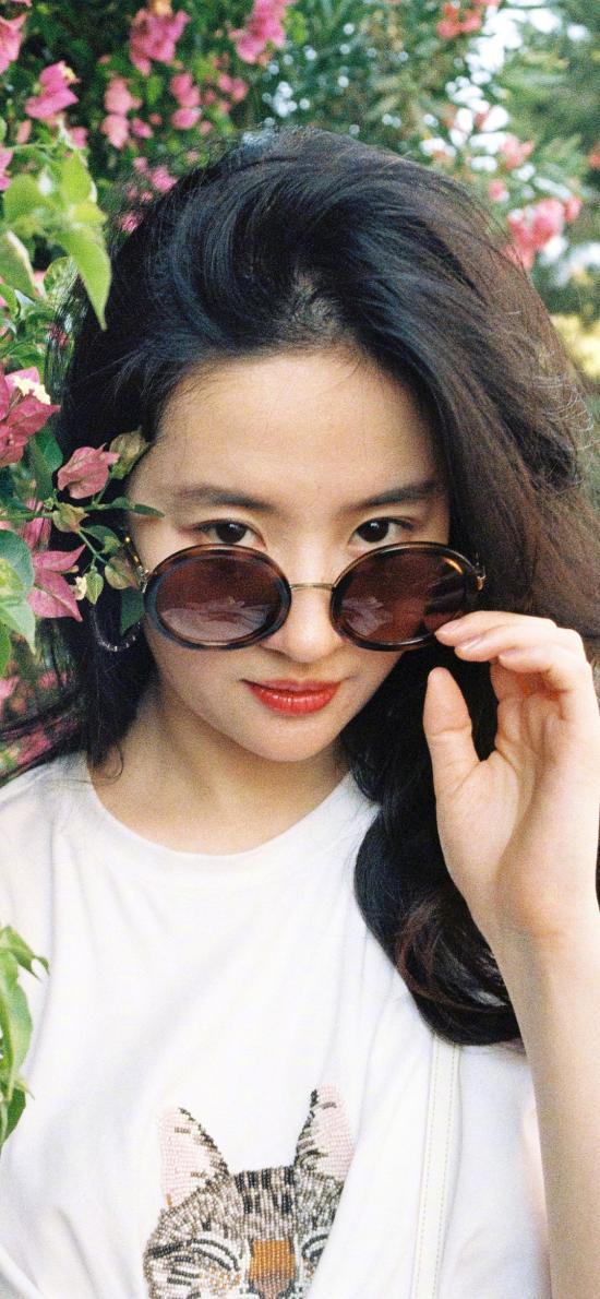 刘亦菲 演员 明星 艺人 墨镜