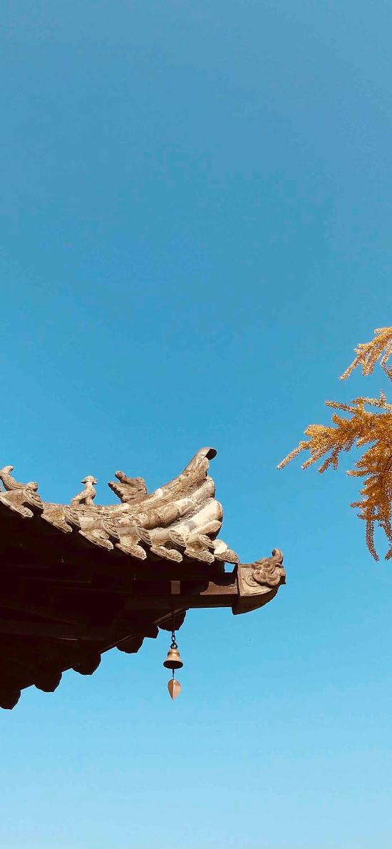 屋檐 天空 屋顶 蔚蓝