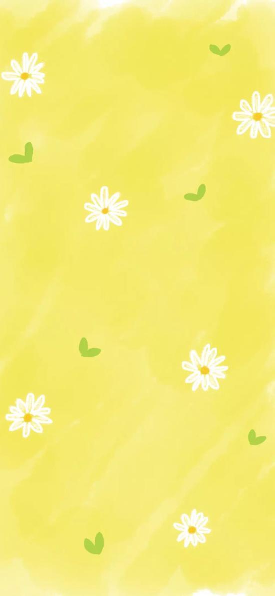 黄色 背景 花朵 菊花 平铺