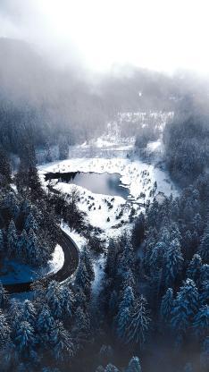 自然 航拍 森林 美景