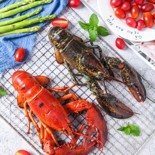 食材 小龙虾 网格 波士顿
