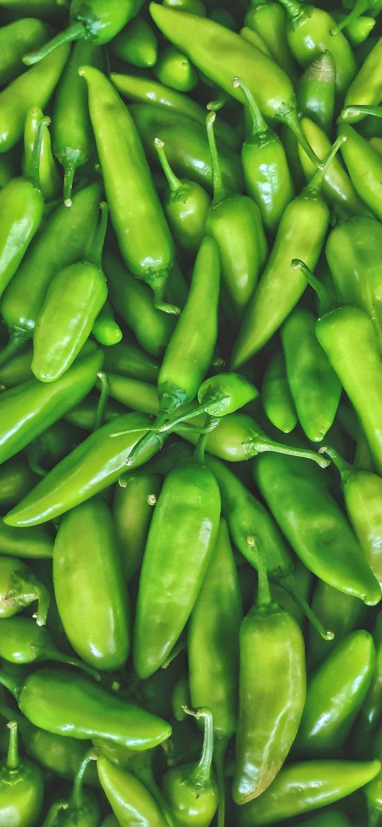青辣椒 蔬菜 绿色 新鲜