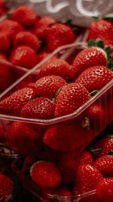 草莓 水果 红色 鲜艳 新鲜