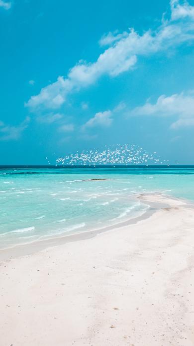 大海 海滩 蓝天白云 风景