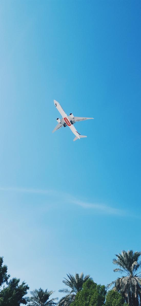 飞机 飞行 航空 蓝色