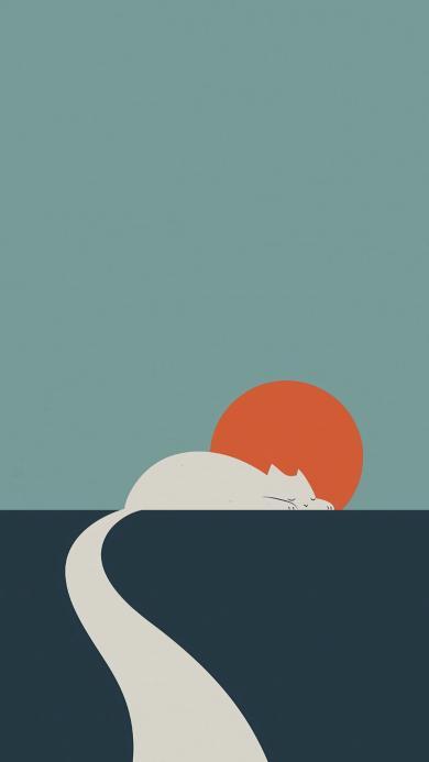 猫咪 太阳 尾巴 道路