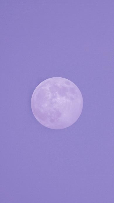 月球 月亮 天空 紫色 圆