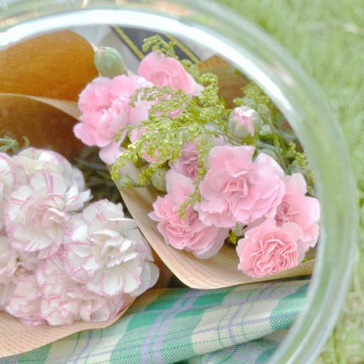 康乃馨 鲜花 花束 草坪 镜子