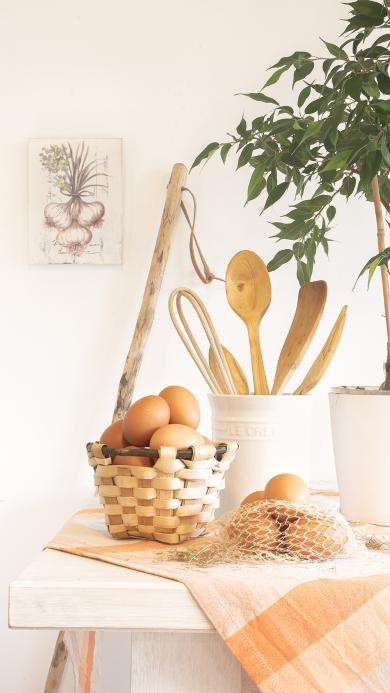 鸡蛋 食材 厨具 绿植