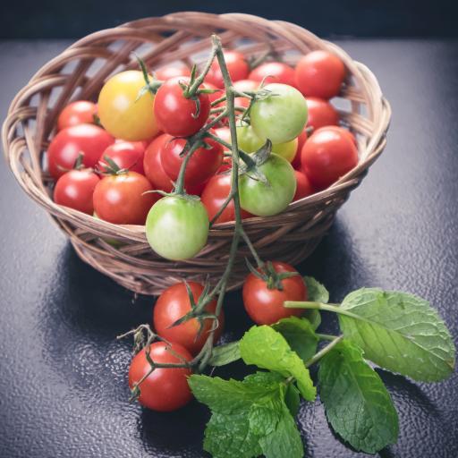 圣女果 薄荷 蔬果 水果