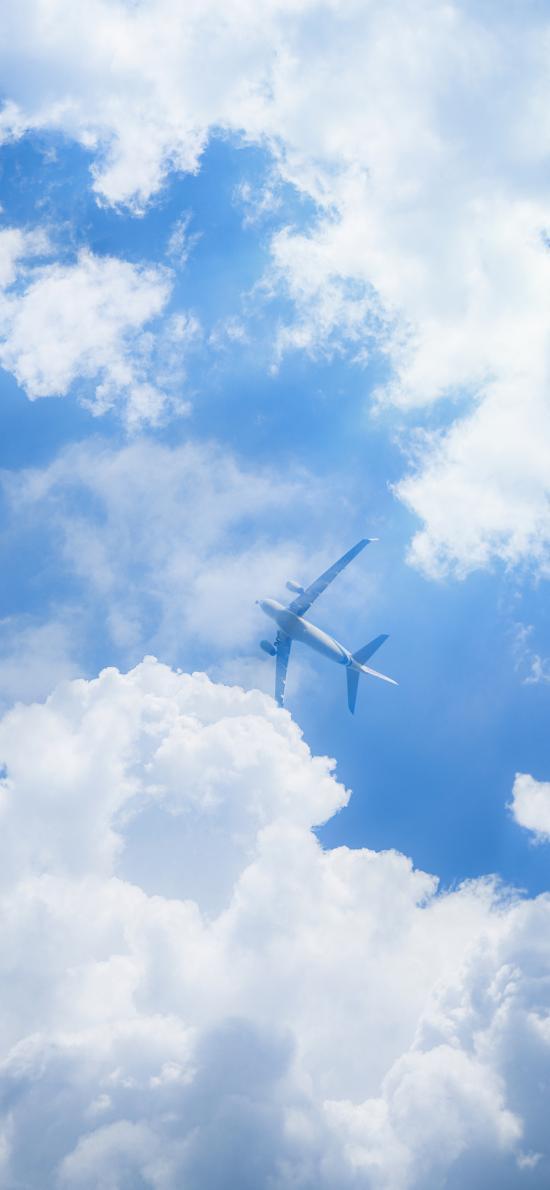 飞机 天空 蔚蓝 白云