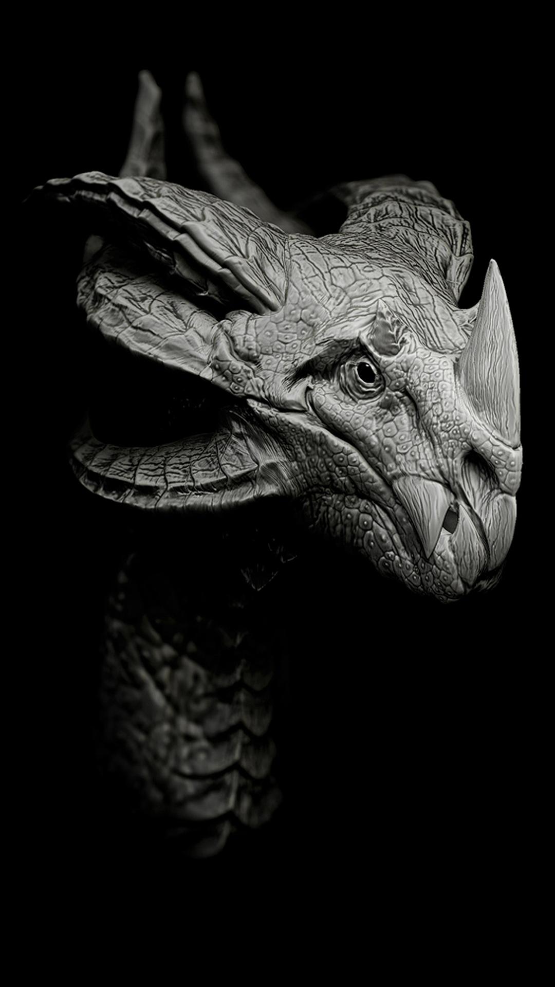恐龙动物黑白龙角苹果手机高清壁纸1080x1920 爱思助手