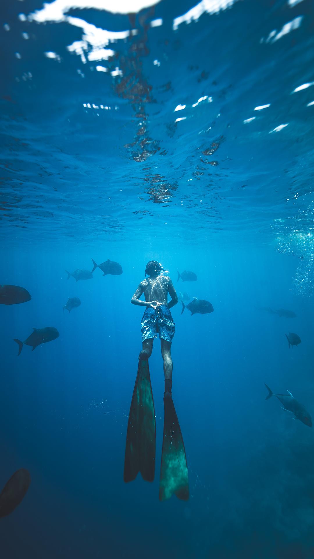 深海潜水女孩鱼群苹果手机高清壁纸1080x1920 爱思助手