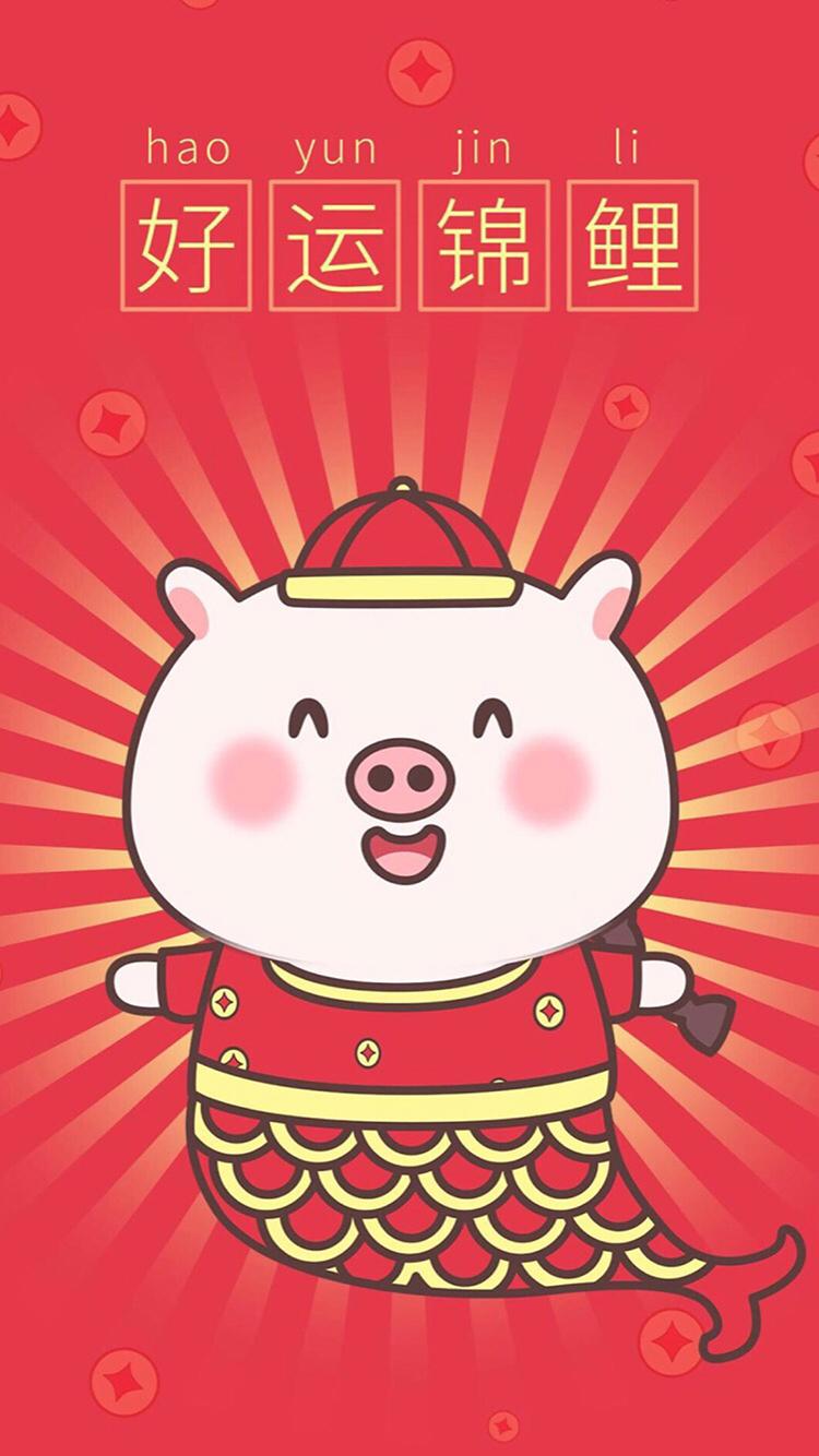 猪年新年卡通猪猪好运锦鲤苹果手机高清壁纸750x1334 爱思助手