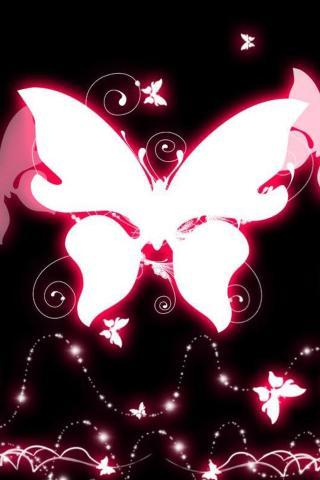 蝴蝶昆虫 动物
