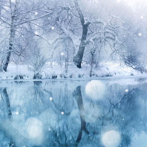冬日美景 风景