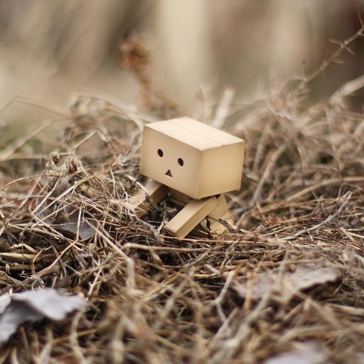 张小盒 寂寞 拥抱 棕色