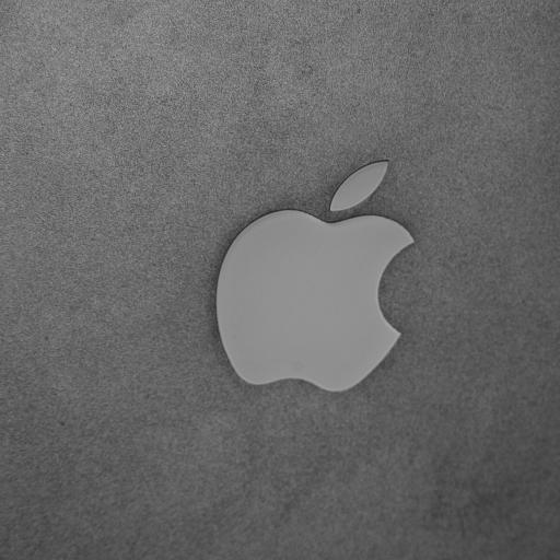 苹果 Apple logo 灰色