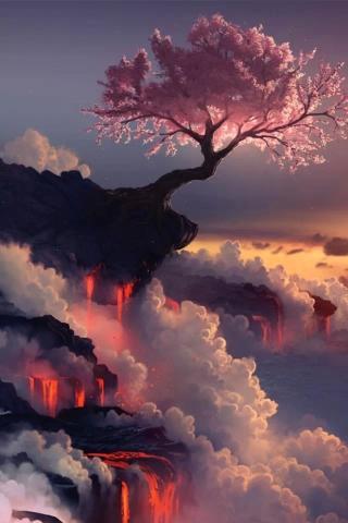 風景 紫色 云 云端