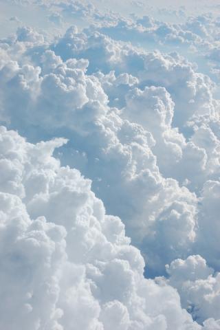 风景 绿色 云 云端