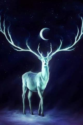 月亮 风景 蓝色