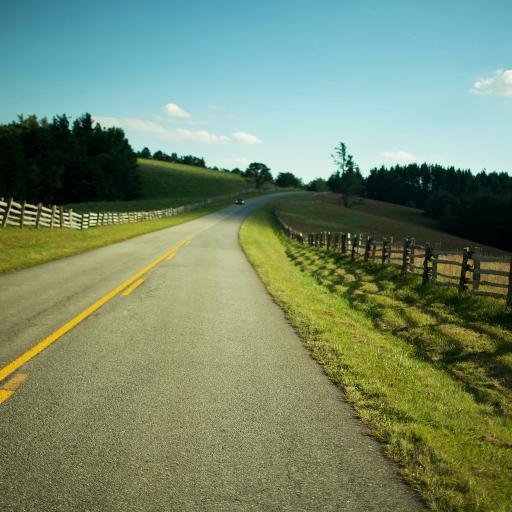田园 牧场 公路 草地 绿色