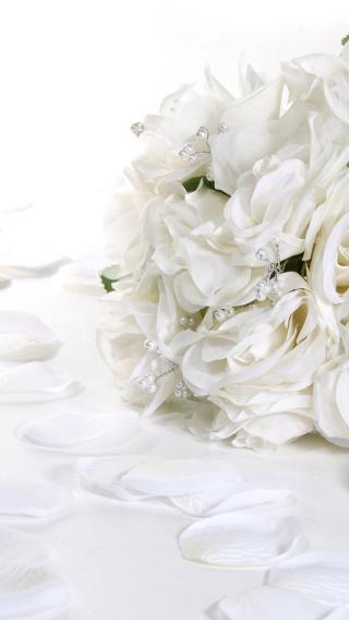 814227910298735 玫瑰之约 爱情壁纸