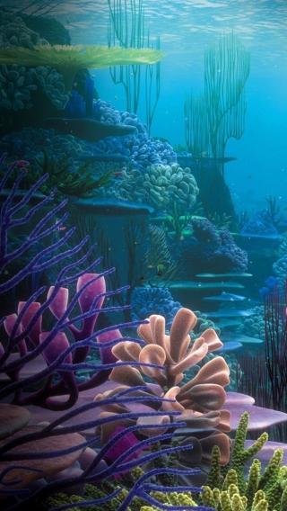 风景高清壁纸10268638 植物花卉 风景壁纸
