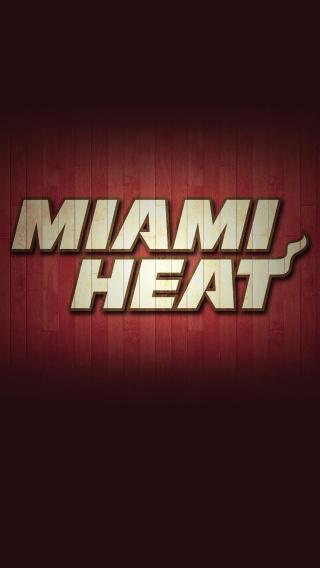 迈阿密 NBA 篮球 运动