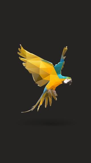 创意动物插画 鹦鹉 几何构成