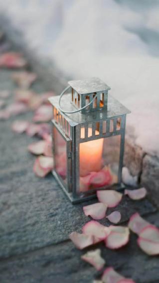 花瓣 蜡烛 唯美
