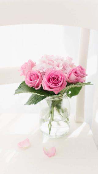 玫瑰 插花 鲜花 粉色 浪漫