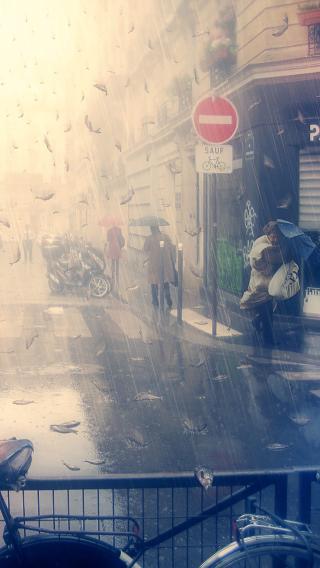 街道 城市 单车 街头 雨景