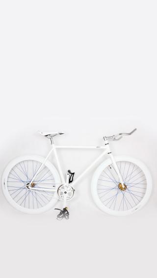 色彩生活 自行车
