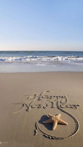 大海 海星 新年快乐 沙滩