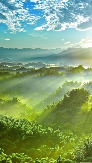 山川 森林 树林 阳光 照射 天空