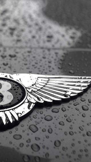 宾利 名车 标识 logo