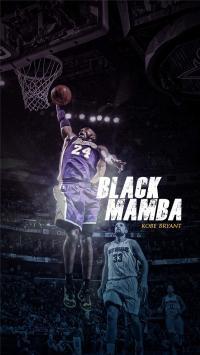 黑曼巴 篮球 科比 24