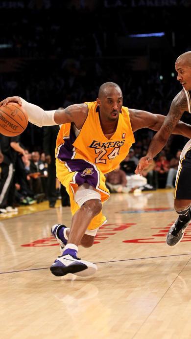 Kobe 24 湖人 篮球 科比