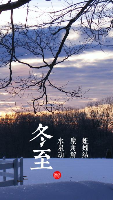 冬至 节气 雪地 冬天 阳光 树木 蓝天 白云 寒冷