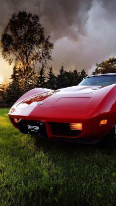 红色 名车 跑车 草地