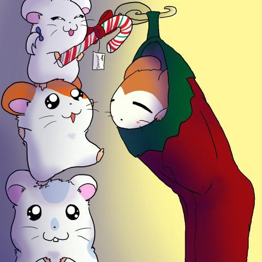 哈姆太郎 三只小仓鼠