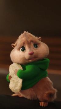 委屈巴巴的小松鼠 坚果